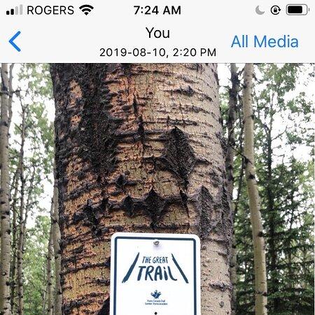 Bragg Creek, Canada: Happy Hiking.