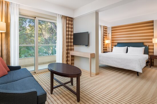 King Superior Park View Guest Room
