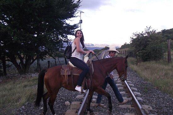 Balade à cheval dans le champ d'agave avec déjeuner
