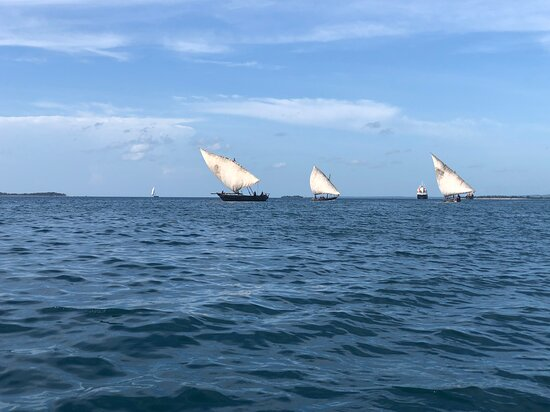 Un ngalawa ou ungalawa est un type de pirogue à balanciers traditionnel, à voile austronésienne et rames. Ce type de pirogue est utilisé par les populations Swahili en afrique de l'est (Tanzanie, Zanzibar. Le bateau est doté d'un mât unique amovible, qui porte une seule voile latine.