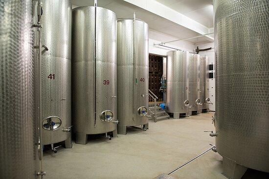 Antau, Austria: Stahltanks für die klassisch ausgebauten Weine
