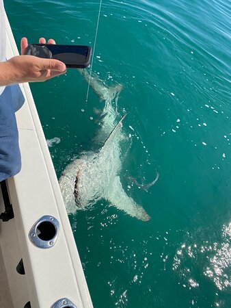 Captain Ryan was awesome. Had a great time. Highly recommended, knowledgeable, fun and we caught our dinner! We will only fish with Ryan when we return to Key West!!