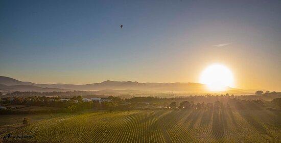 Yarra Valley Balloon Flight at Sunrise: balloon Yarra Valley