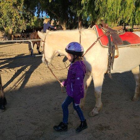 Santa Clarita Valley Equestrian Center