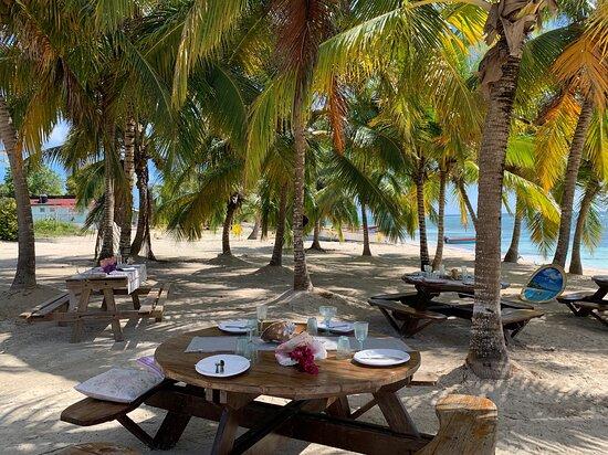Les belles tables préparées et décorées par Cathy pour déguster les langoustes face à la mer