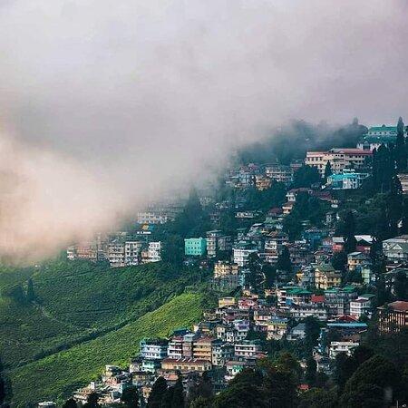 Darjeeling ♥️  📷©️Trilochan Singh