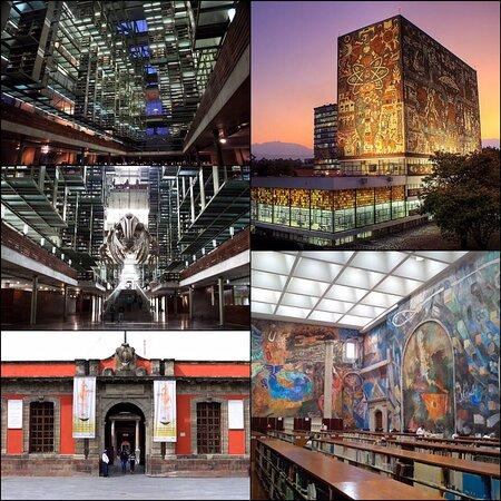 Πόλη του Μεξικού, Μεξικό: ¿Te apasionan los libros? Acompáñanos en este recorrido por algunas de las bibliotecas más bonitas de la CDMX 💜🥰📚  https://themagicadventures0.blogspot.com/2020/11/el-amor-por-los-libros-y-las.html