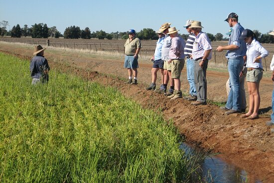 Agriclultural Tours Riverina