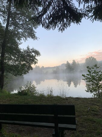 Okolí u rybníka