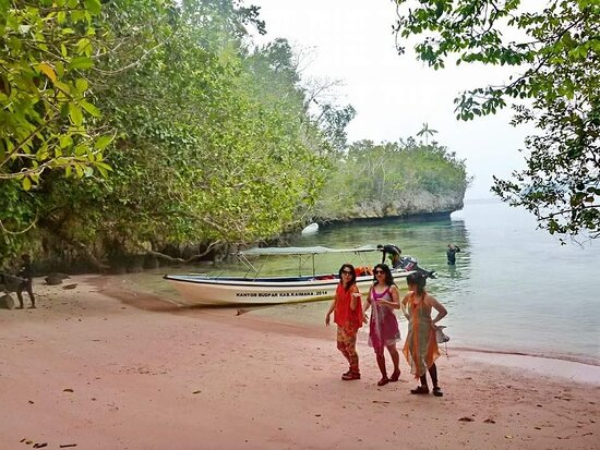 Kaimana, Indonesia: Pink Beach