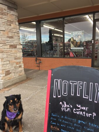 Scooters the shop dog is head of Customer Relations.  Stop by and give her a treat from the cookie jar!