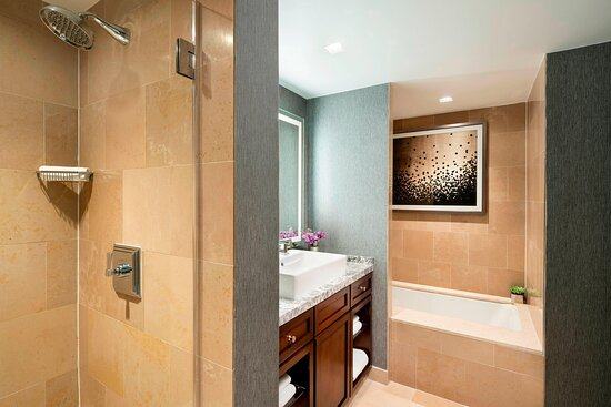 Executive Suite Bathroom