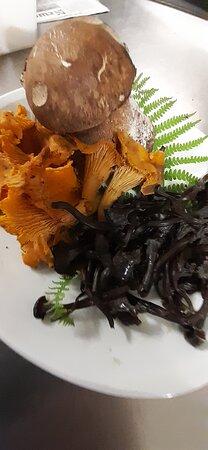 !Cueillette d'automne, risotto aux champignons veggie