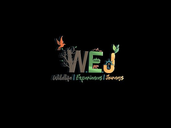 W.e.j - Wildlife | Experiences | Journeys