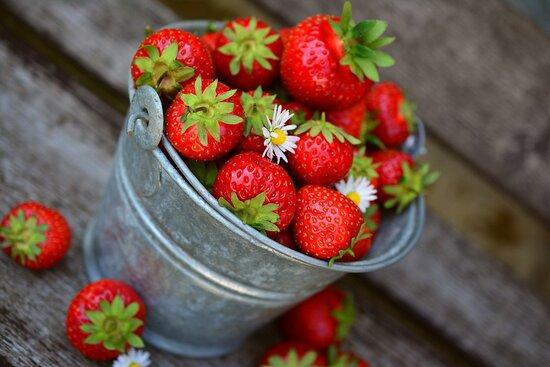 Gimbsheim, Jerman: Wir verarbeiten unsere eigenen Erdbeeren! Probiert unseren Erdbeerbecher!