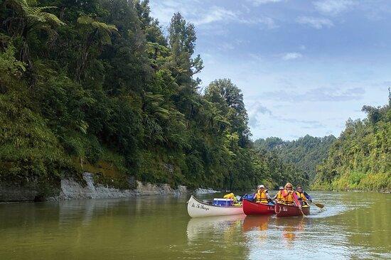 Unique Whanganui River Experience