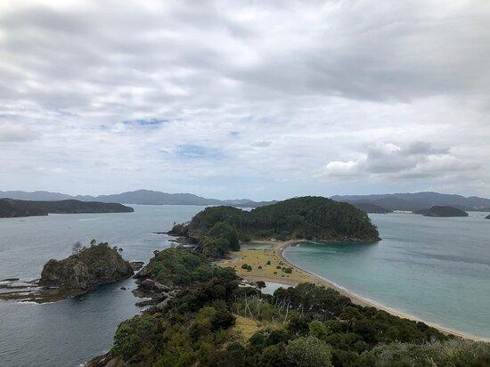 Bay of Islands Cruise & Island Tour - Snorkel, Hike, Swim, Paddleboard, Wildlife Photo