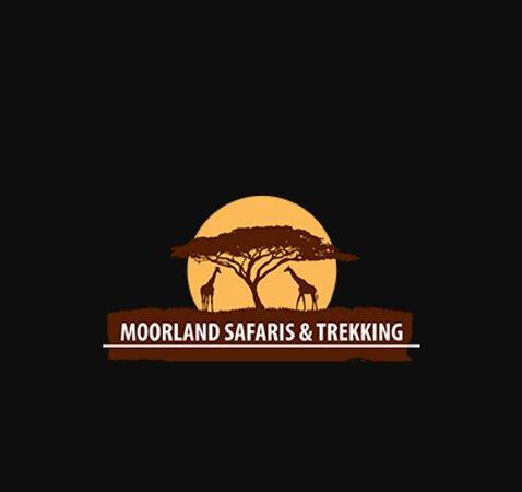 Moorland Safari and Trekking