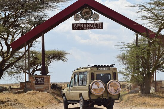 BURIGI CHATO SAFARIS CO LTD - Dar es Salaam >> Mikumi | Ruaha | Kilimanjaro |Tanzania Safari Company