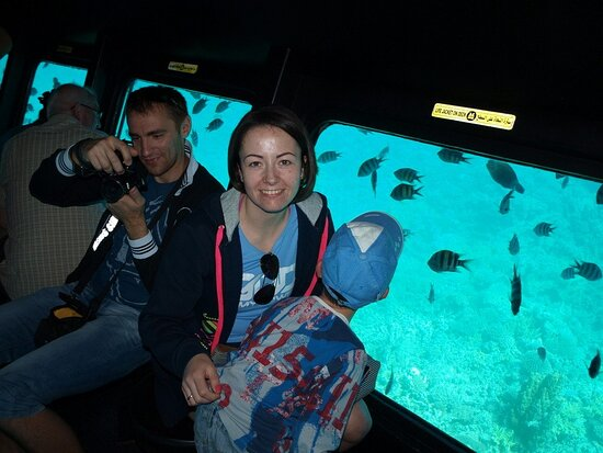 Excursion semi submarine -seascope-aquascope in Egypt,(sharm el sheikh)28$ Timing pick up  9:00  Back to the Hotel 11:30  pick up  11:00  Back to the Hotel 13:30  pick up  13:00  Back to the Hotel 15:30  pick up  15:00  Back to the Hotel 17:30     Duration  Tour duration: 2:30 hours.     trip Availability  Everyday     Cancellation  you can cancel your trip at any time
