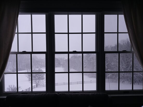 We got a snow storm overnight and woke to this view.