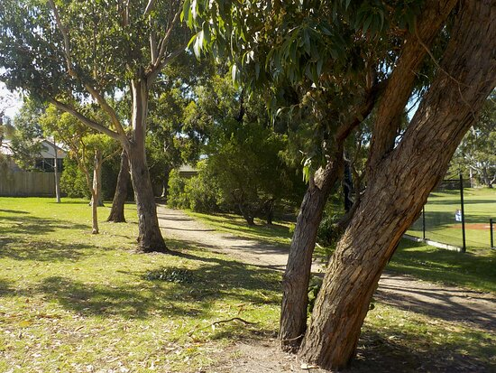 Path on North side of park, heading down the East side