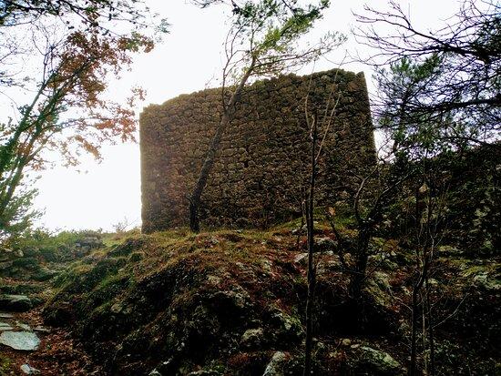 Bušelića Kula