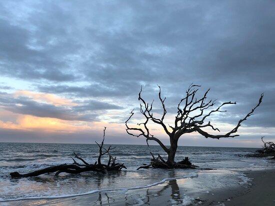 Sunset over Driftwood Beach - Jan 2021