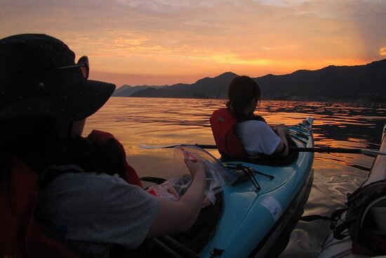 Night Kayak Tour Relax Under the Natural Glow of Sea Fireflies