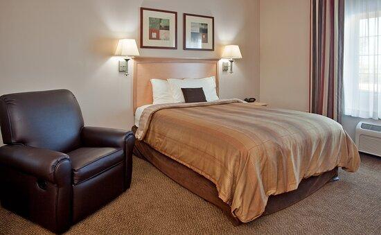 Studio Suite 1 Queen Bed