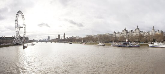 Royal Horseguards River View
