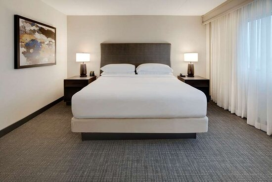 Bed Bugs And Hockey Review Of Embassy Suites By Hilton Detroit Troy Auburn Hills Troy Mi Tripadvisor