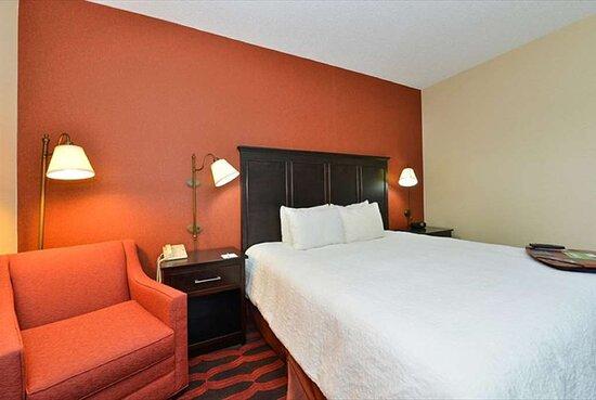 Sturgis, MI: Guest room