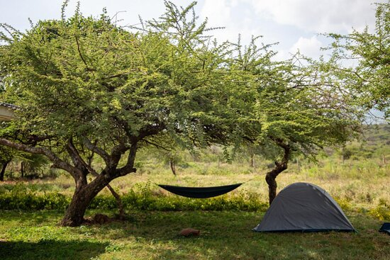 Ngong, كينيا: Peace and tranquility in the rain shadow area of Ngong Hills....  