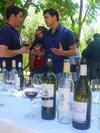 Pedro Urbina Vinos Restaurantes Rioja