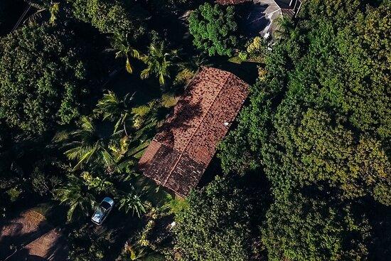 Apenas 6 suítes em um amplo terreno arborizado, árvores frutíferas e muitos passarinhos