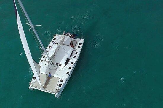 Ocean Marina Yacht Charters