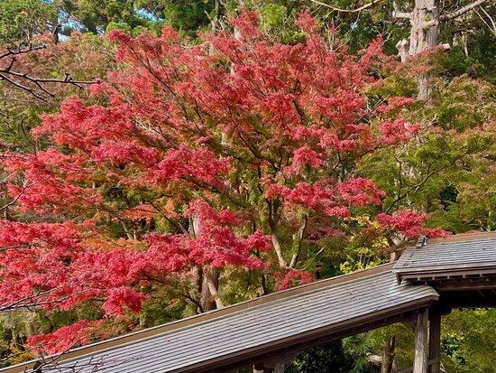 Ankokuzansaifuku Temple