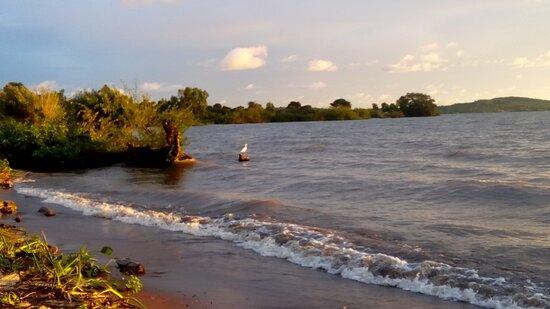 Siaya, كينيا: Our beachfront
