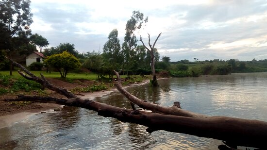 Siaya, كينيا: Our beach