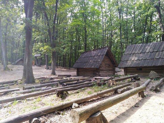 Bojna, سلوفاكيا: Drevene domčeky za vstupnou bránou