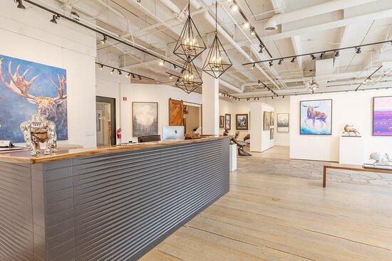 Gallery Wild