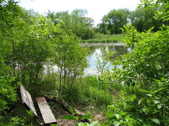 Nitschke Mounds Park