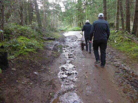 muddy trails.
