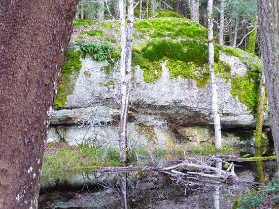 large moss covered rock slabs.