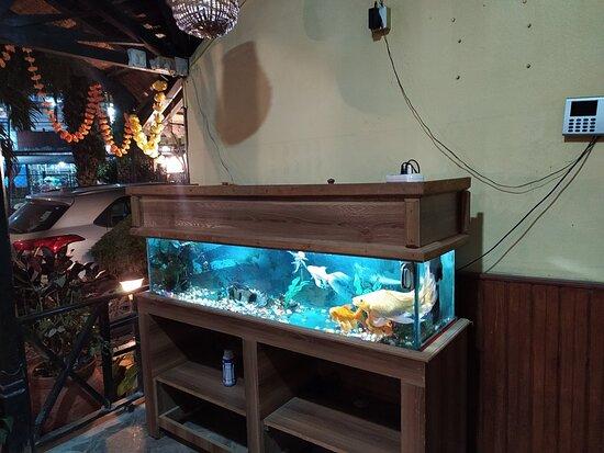 Kc's Restaurant and Bar