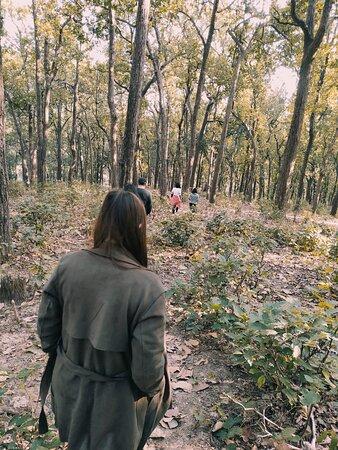 Guided hiking trip