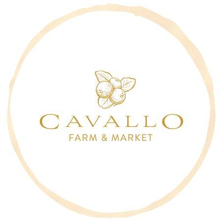 Lecanto, FL: Cavallo Farm & Market: Blueberry U-Pick