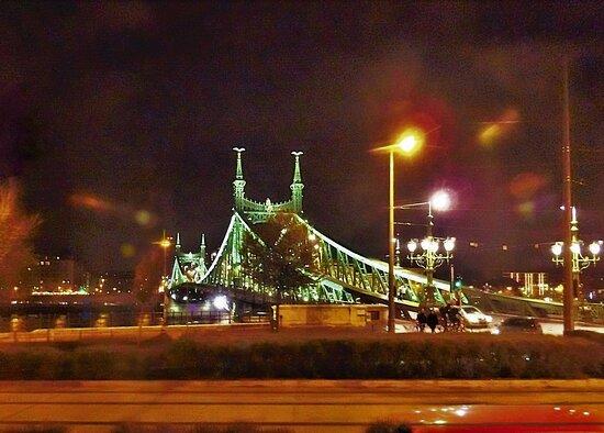 Budapest, Hungary: Liberty Bridge (1)