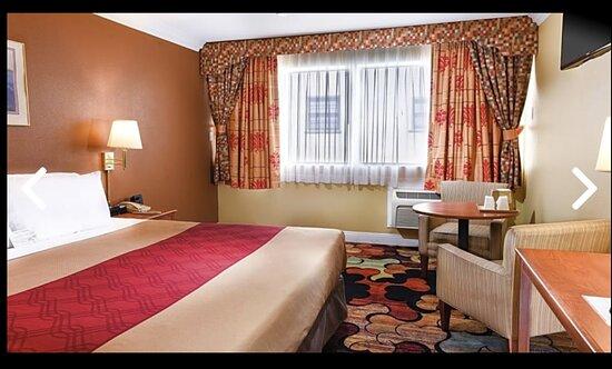 Bãi biển Long, CA: standard king room